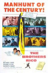 The Brothers Rico 1957 DVD - Richard Conte / Dianne Foster